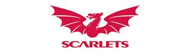 Parc y Scarlets case study