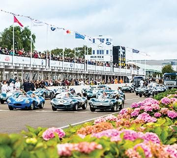 Goodwood race start