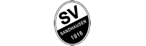 SV Sandhausen case study