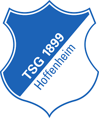 TSG Hoffenheim case study